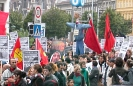 Antikriegs-Demo in Wien mit Scheich Yassin Bild