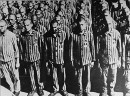 Apell während der Schutzhaft, Foto: Klaus Eisterer, U. S. Holocaust Memorial Museum, pixabay.