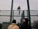 Gelungene Flucht über die Zäune ...