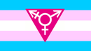 stop transphobia!